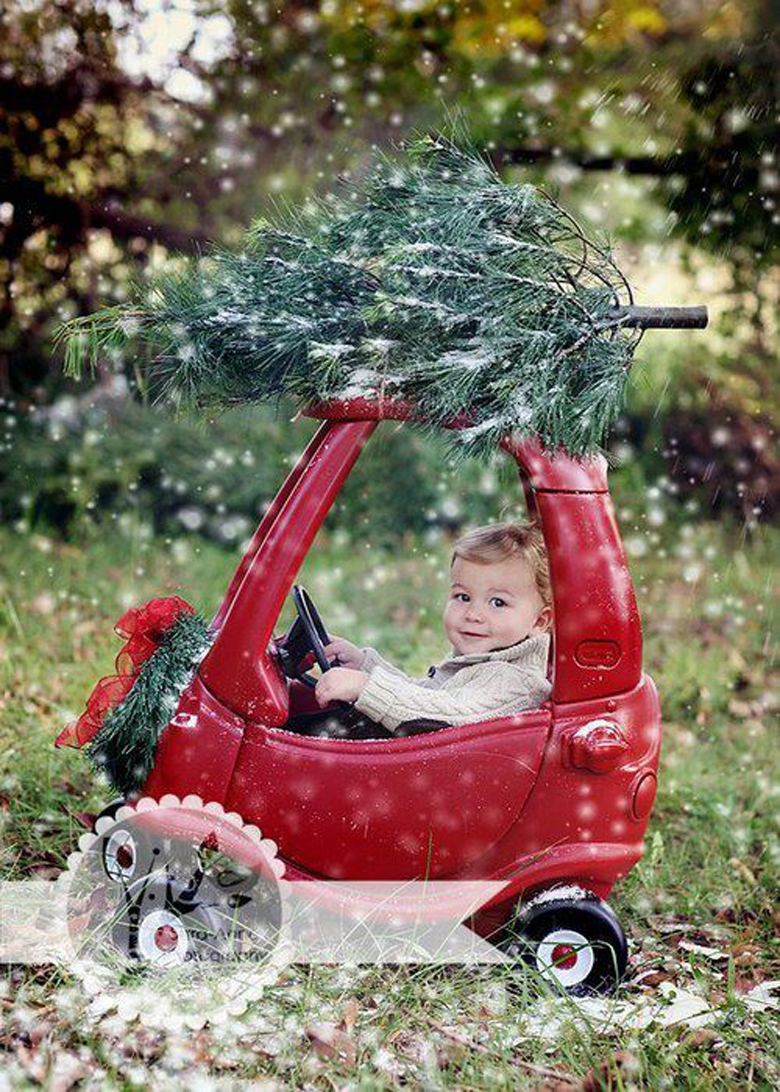 Dashing Through The Snow most creative and funny Christmas photos craft-mart