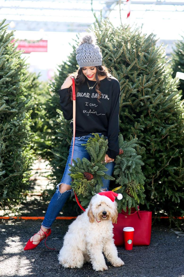 Dear Santa, I can explain most creative and funny Christmas photos craft-mart