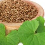Ajowan seed essential oil is distilled from the seeds of a plant also known as Ajwain or Carom