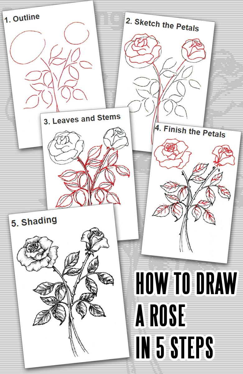 How to Draw a Rose in 5 Steps - Learn how to draw flowers like roses of lilies and turn them into really beautiful wall art. practice flower drawings easy on chalkboard with step-by-step tutorials and easy to follow the instructions and get amazing results! Drawing is relaxing and fun for all ages! #drawings #howtodraw #flowers  #wallart #walldecor