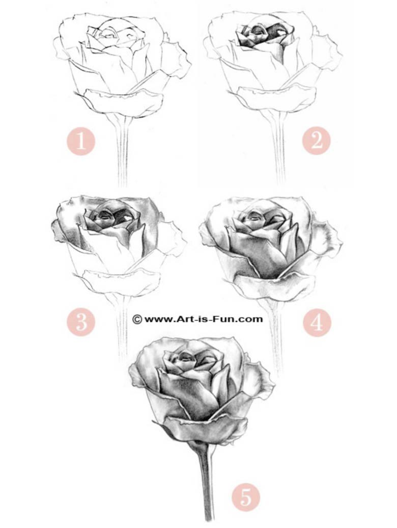 how-to-draw a rose steps - Learn how to draw flowers like roses of lilies and turn them into really beautiful wall art. practice flower drawings easy on chalkboard with step-by-step tutorials and easy to follow the instructions and get amazing results! Drawing is relaxing and fun for all ages! #drawings #howtodraw #flowers  #wallart #walldecor
