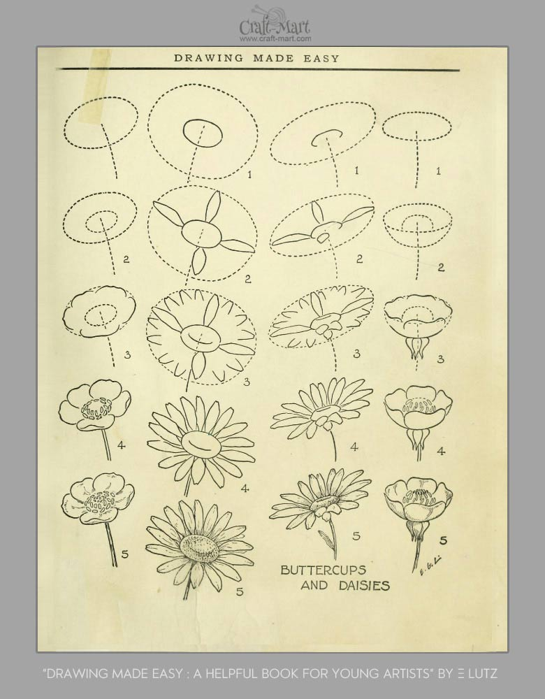 draw buttercups and daises - Learn how to draw flowers and turn them into really beautiful wall art. practice flower drawings easy on chalkboard with step-by-step tutorials and easy to follow the instructions and get amazing results! Drawing is relaxing and fun for all ages! #drawings #howtodraw #flowers  #wallart #walldecor