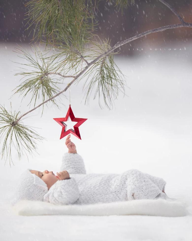 Cute Christmas Card Sayings.17 Most Creative And Funny Christmas Photos Plus Sayings