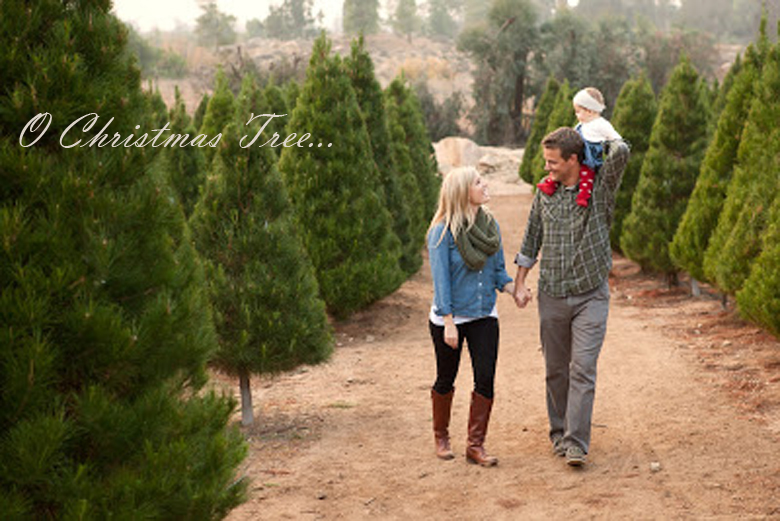 17 MOST CREATIVE AND FUNNY CHRISTMAS PHOTOS (PLUS SAYINGS AND QUOTES) #funnyChristmasphotos; outdoor Christmas picture ideas; unique Christmas cards