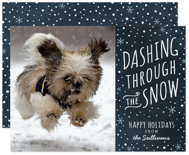 Funny Christmas Photos Card Ideas - Christmas Cards Ideas to Cheer Up your Family and Friends. Funny Dashing Through The Snow Photo Christmas Cards Ideas