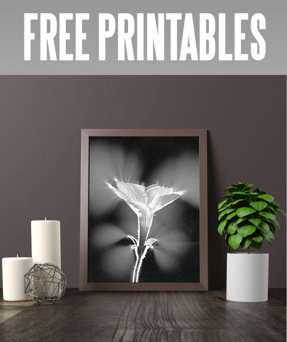 free printables of flowers