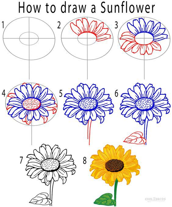 how to draw a sunflower -Learn how to draw flowers like roses of lilies and turn them into really beautiful wall art. practice flower drawings easy on chalkboard with step-by-step tutorials and easy to follow the instructions and get amazing results! Drawing is relaxing and fun for all ages! #drawings #howtodraw #flowers #wallart #walldecor