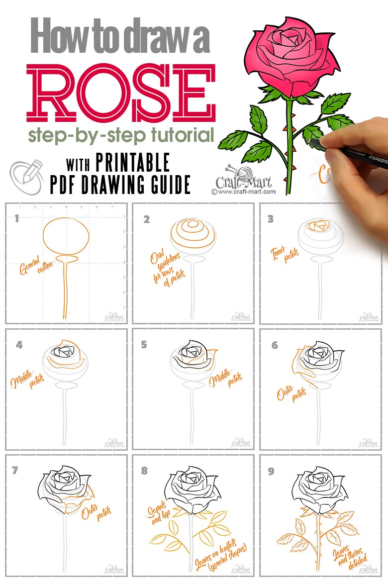 rose drawing tutorial with step-by-step printable guide