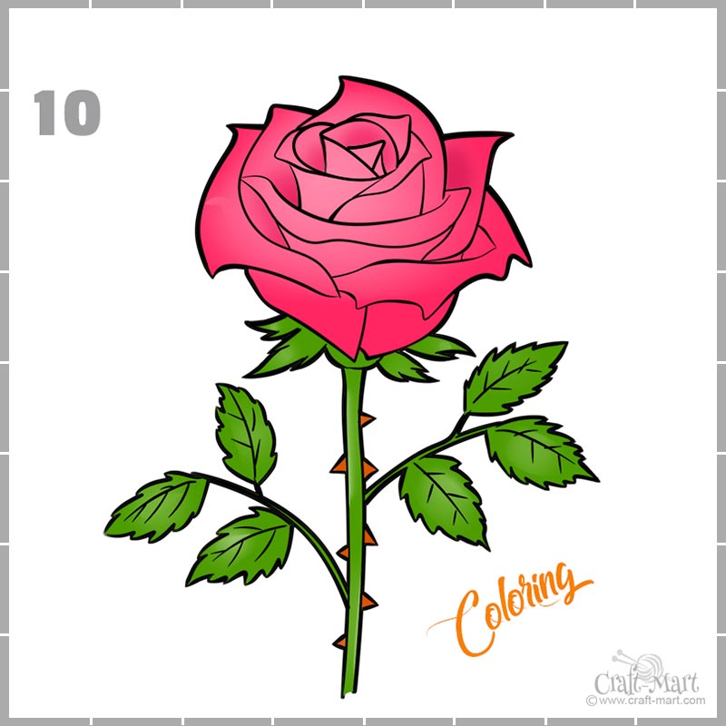drawing a rose with pink petals and thorns