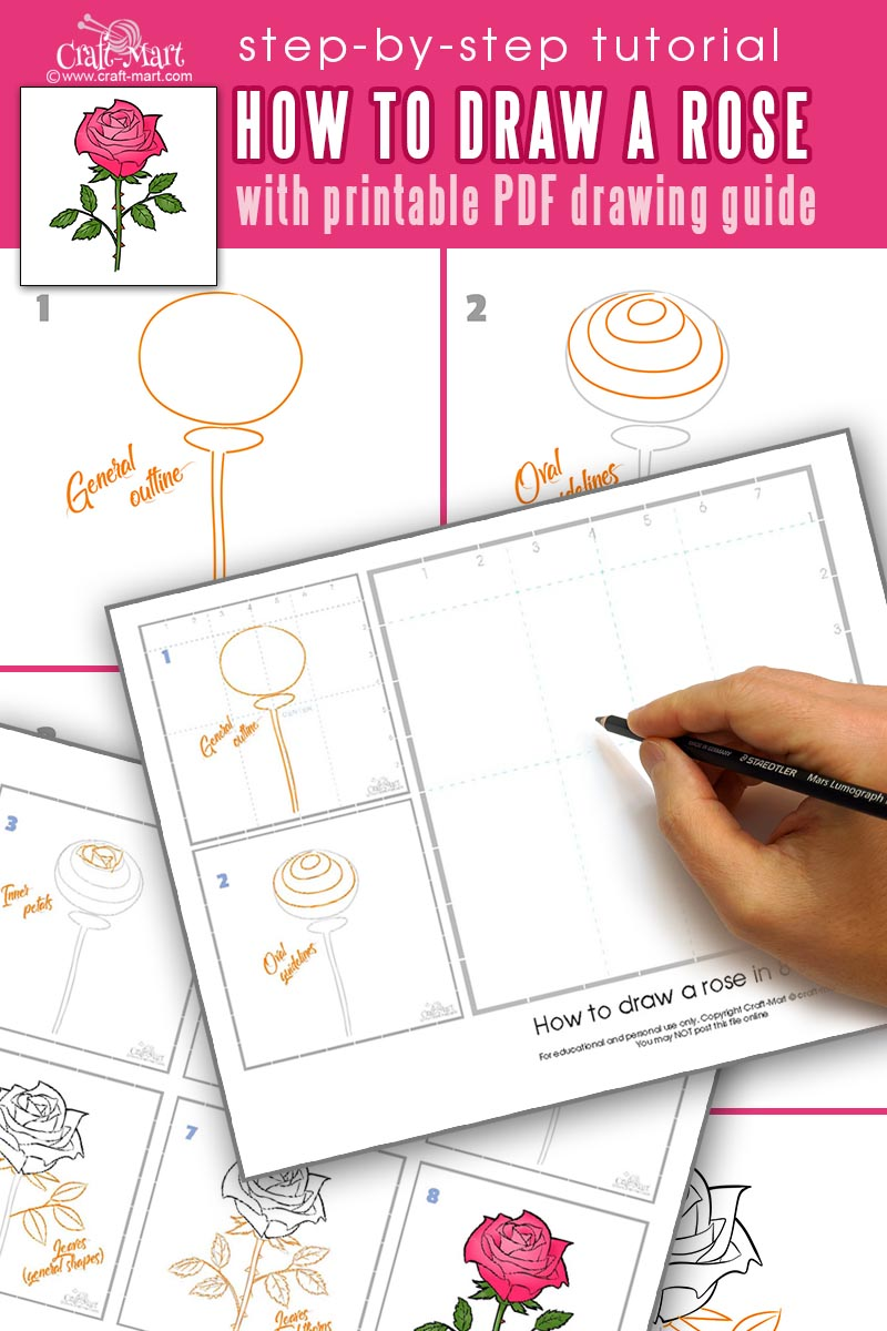 How to draw a rose flower step-by-step tutorial with printable guide for beginners