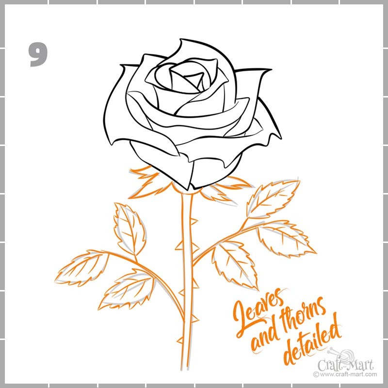 finishing drawing a rose with thorns and leaves