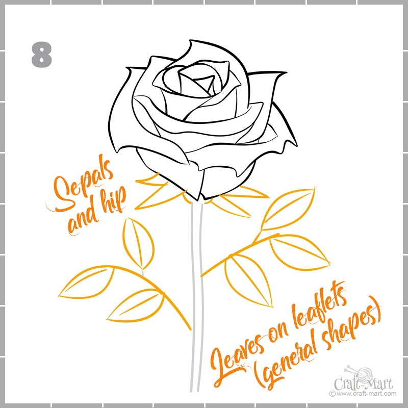 drawing a rose outlines for leaflets and sepals