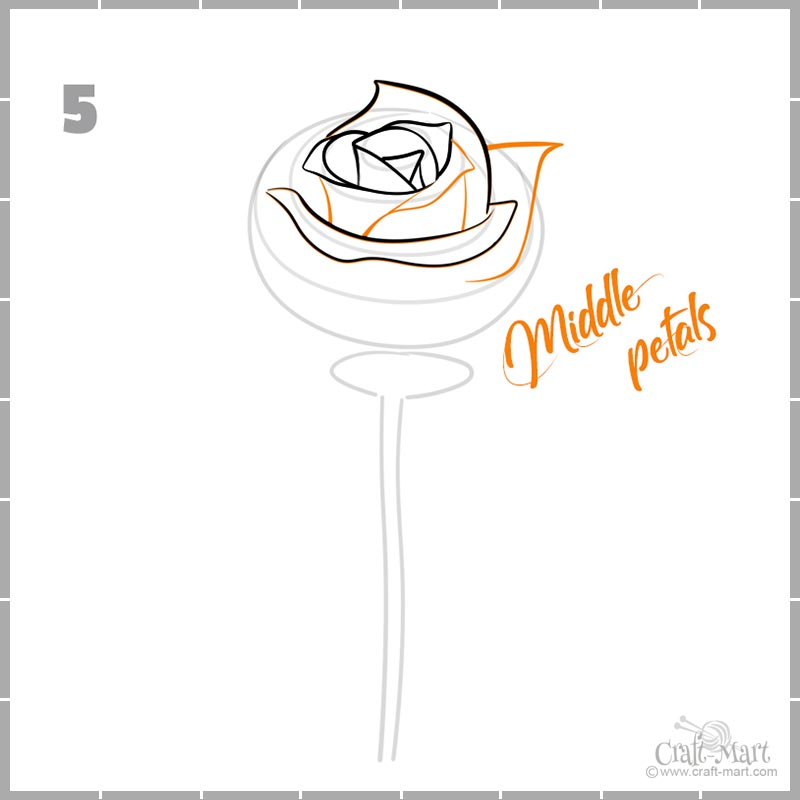 drawing middle petals of a rose flower