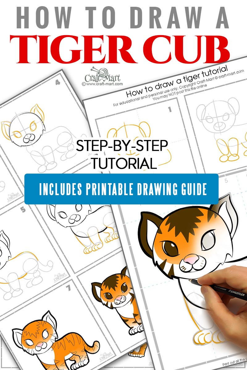 how to draw a tiger cub easy step by step