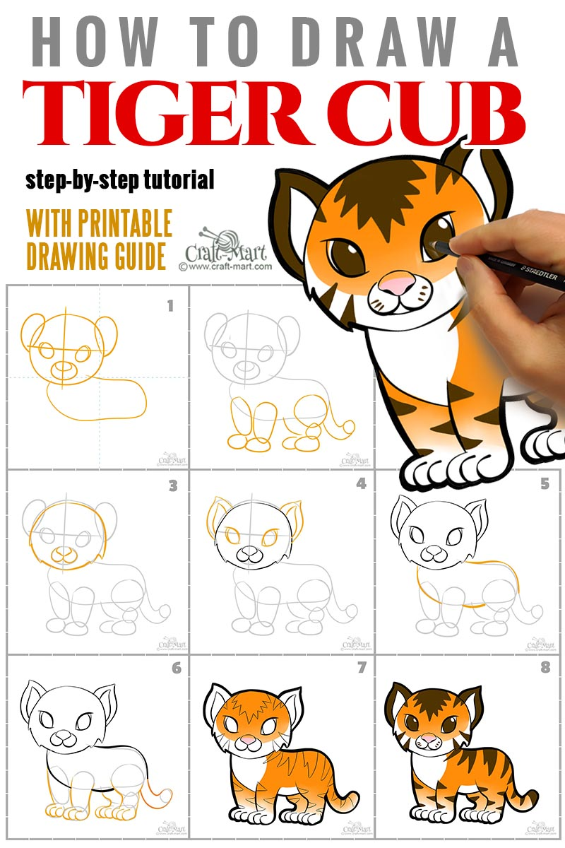 easy steps for creating a drawing of a tiger cub