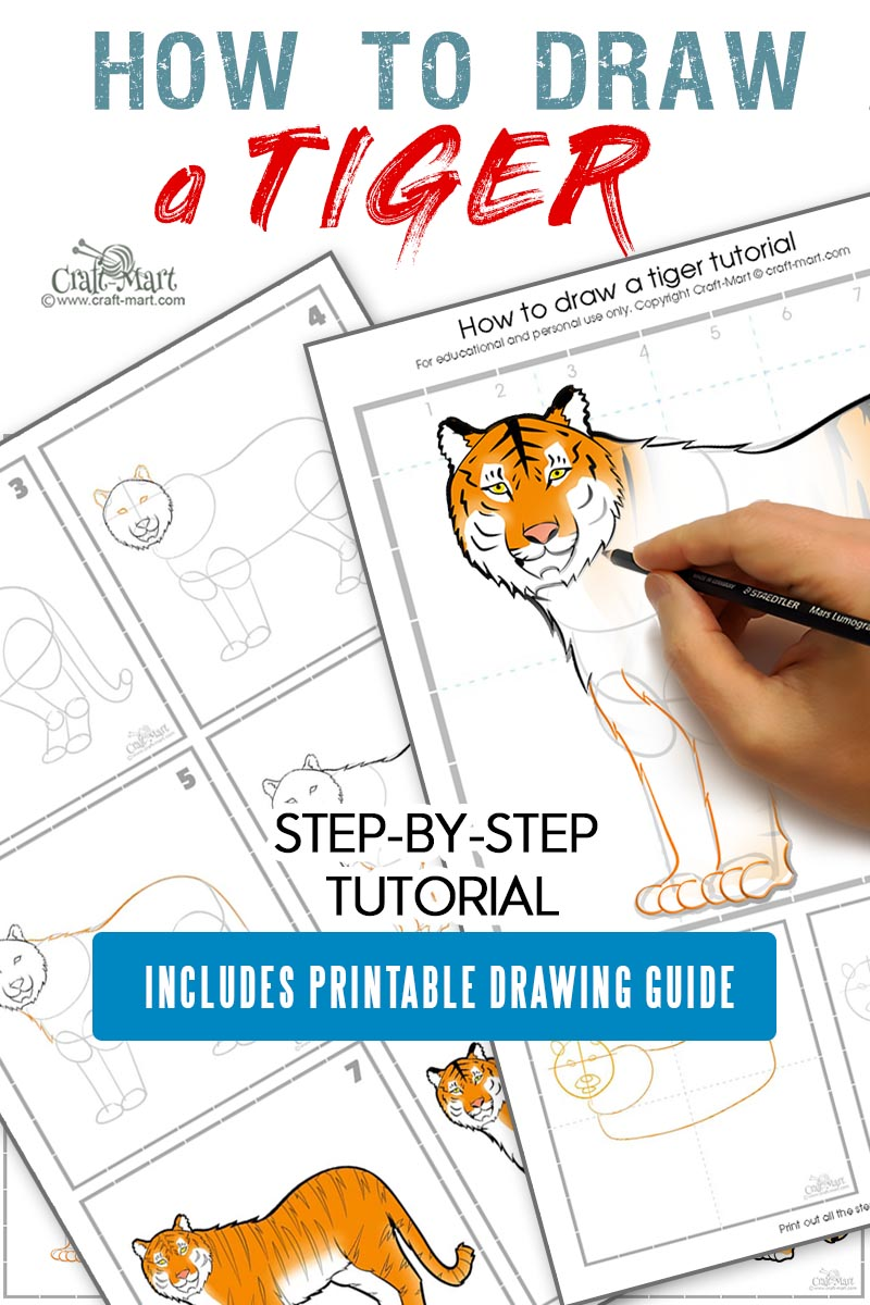 how to draw a tiger step by step tutorial