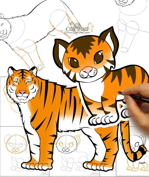 how to draw a tiger and a tiger cub step-by-step