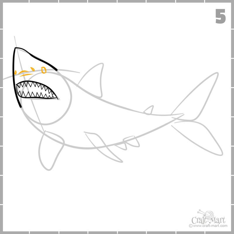 Learn how to draw shark's nose