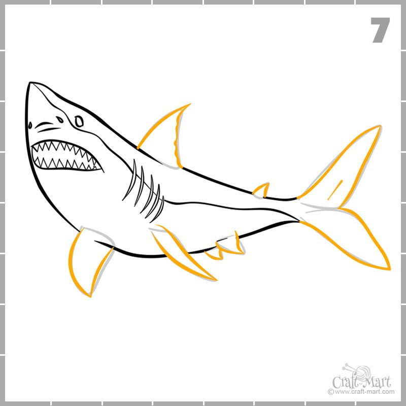 Learn how to draw shark's fins and tail