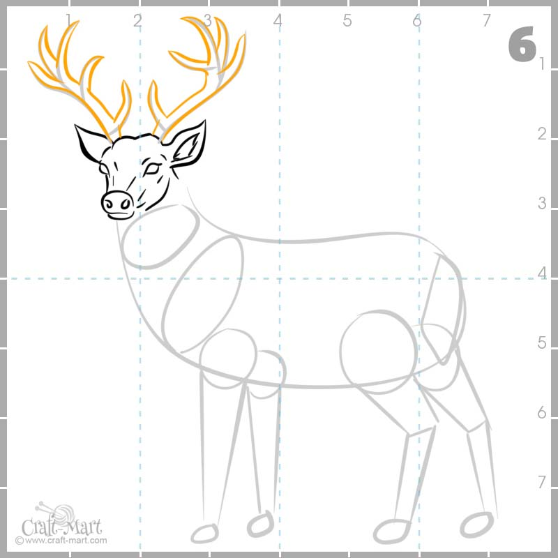drawing deer's antlers