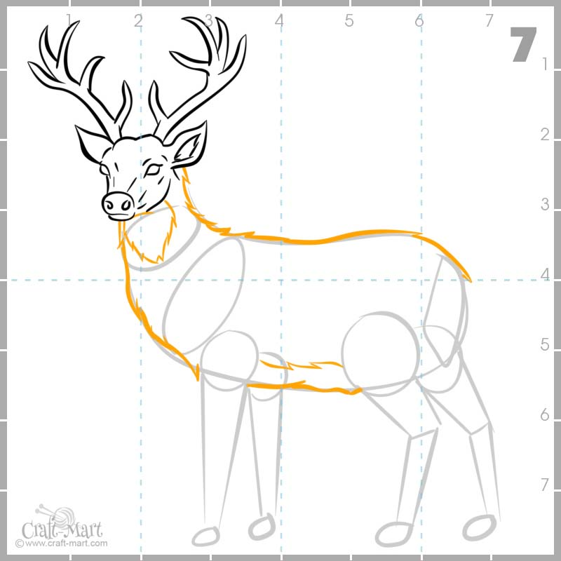 finishing drawing deer's body