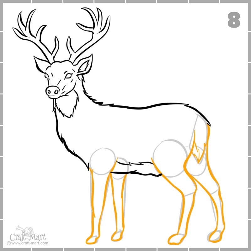 drawing final outlines of deer's legs