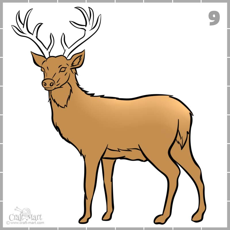 coloring the deers