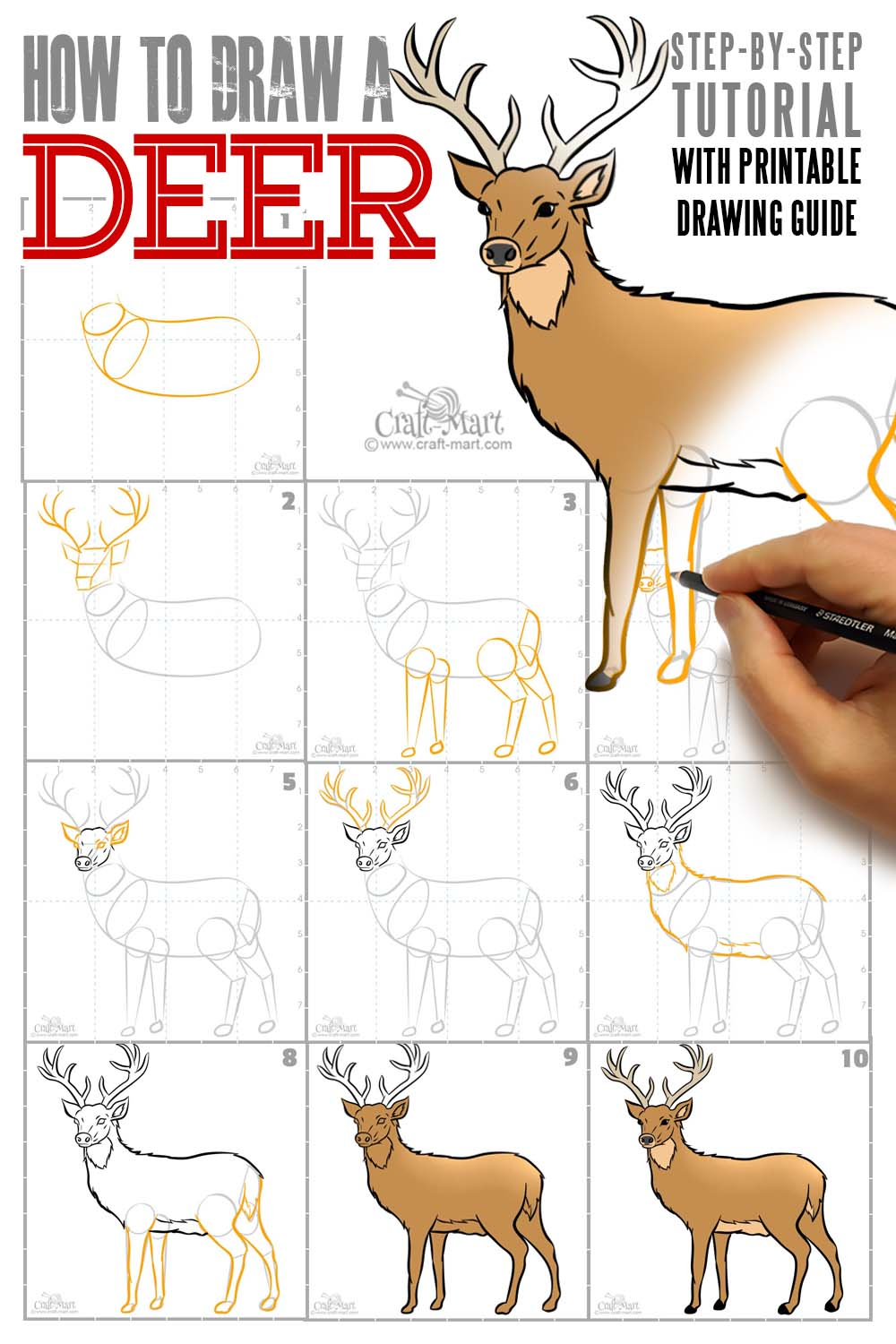 how to draw a deer tutorial