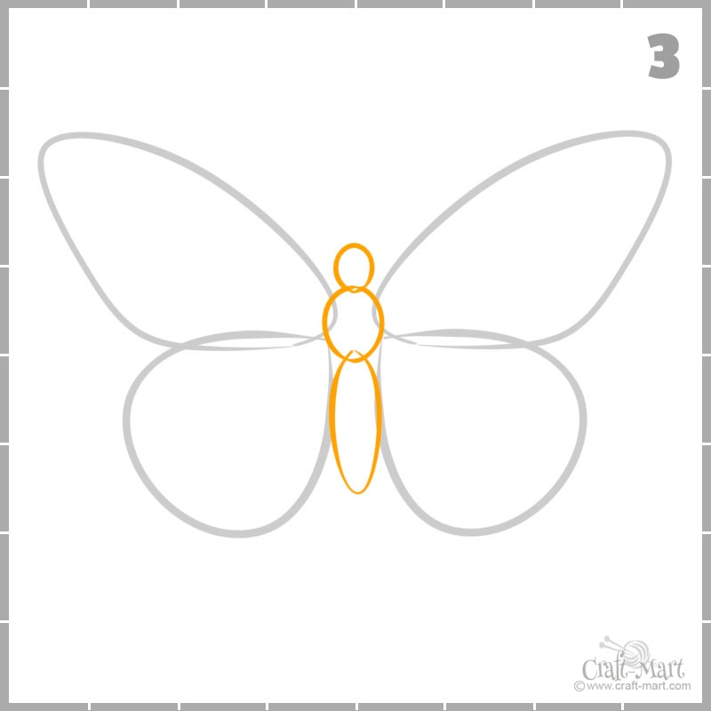 How to draw butterfly body