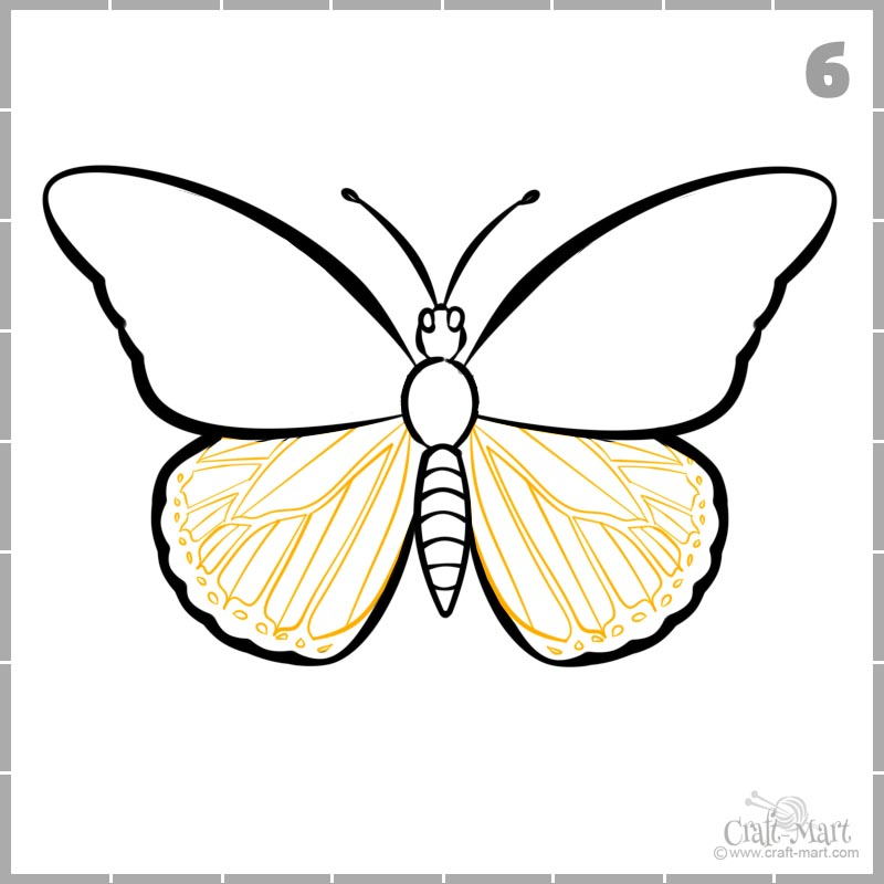 How To Draw A Butterfly Step By Step Easy And Fast Craft Mart