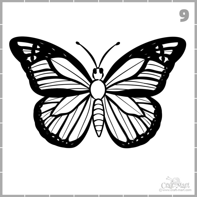 draw butterfly wings