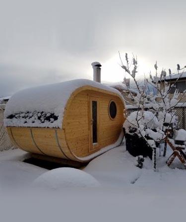 tiny log cabin kits for sale