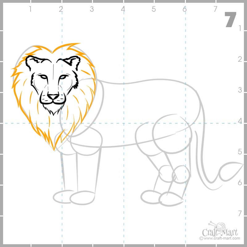 Drawing Lion's mane