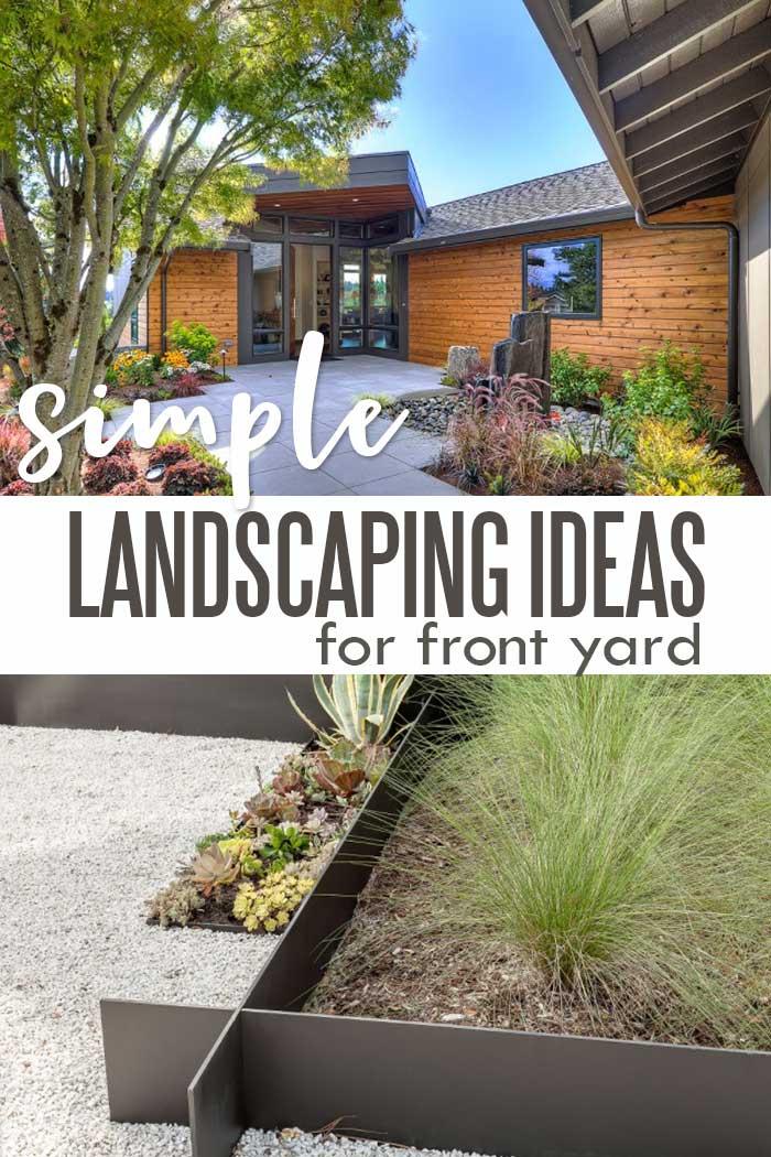 Hardy modern landscaping