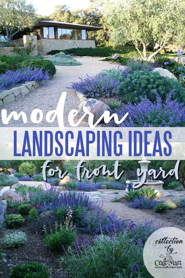 Contemporary low-maintenance Landscape on a budget