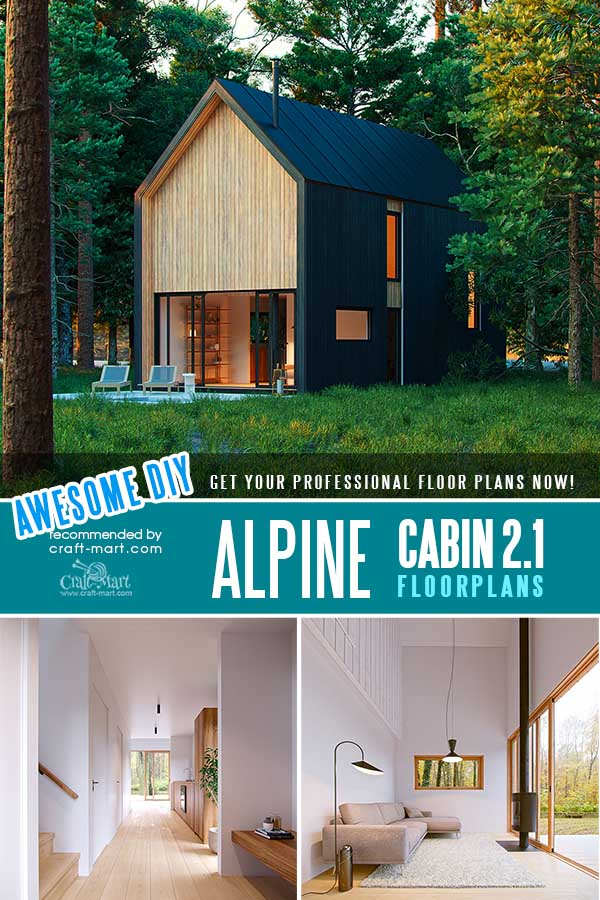 Modern Alpine Cabin with 2 bedrooms