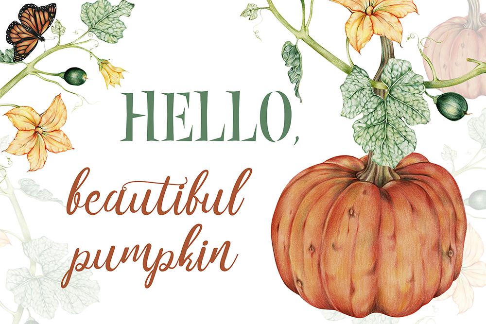 "free fall printable ""Hello, beautiful pumpkin"""